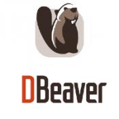 Logo DBeaver